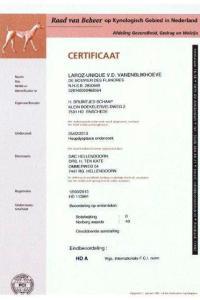 Certificazione Displasia LarozUnique