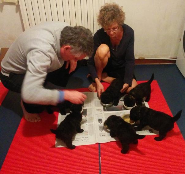 Alessandro e Raffaella assistono il pasto dei cuccioli
